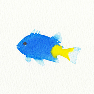 fish1128.jpg