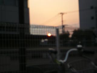 P1020965.jpg